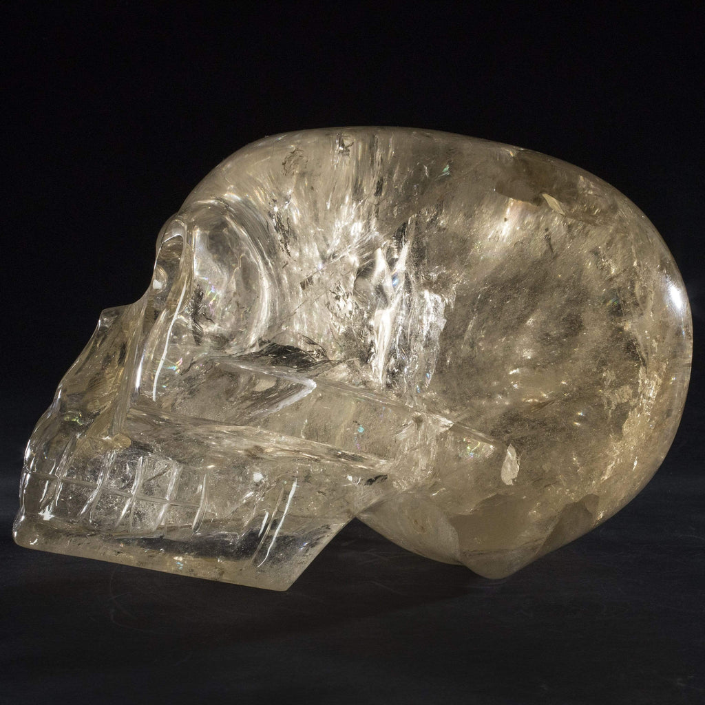 Kalifano Gemstone Carvings Natural Brazilian Citrine Hand Carved Skull - 26 kg Q120000