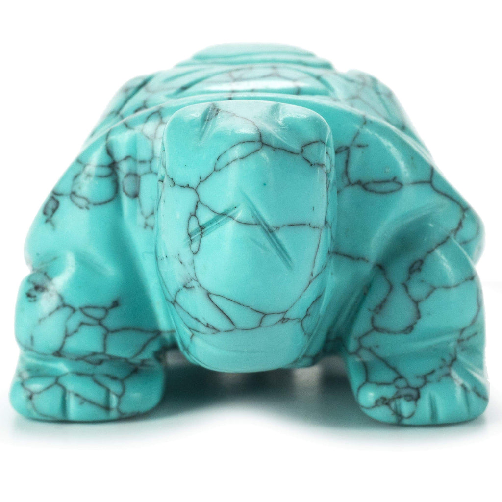 Kalifano Gemstone Carvings Turquoise Turtle 2'' Natural Gemstone Carving CV14-T-TQ
