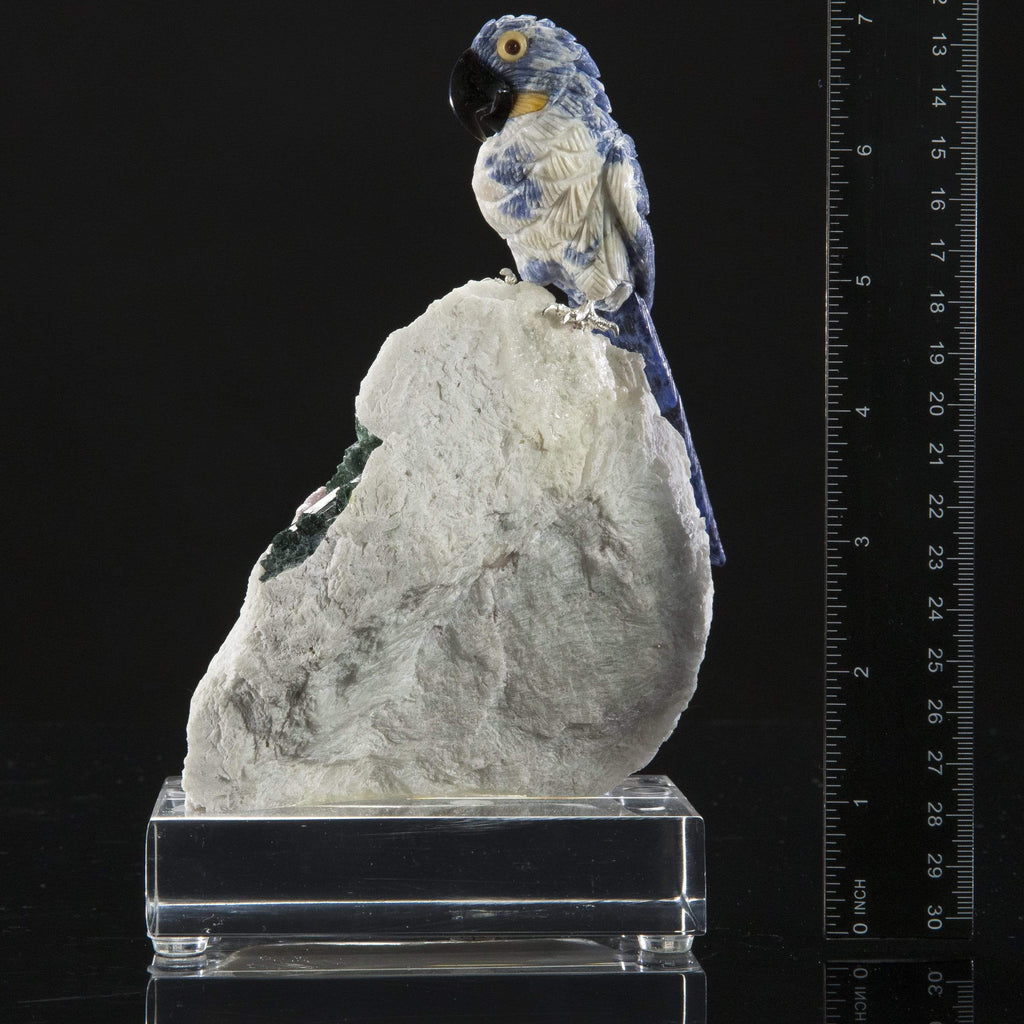 Kalifano Love Birds Carvings Sodalite Hyacinth Macaw Love Birds Carving on Calcite & Watermelon Tourmaline Base LB.B101.002