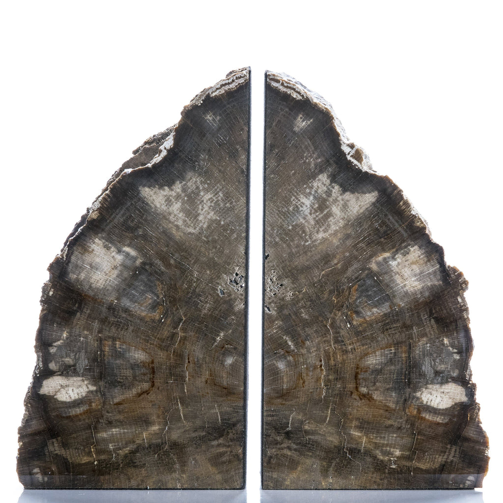 KALIFANO Petrified Wood Petrified Wood Bookend PWB2700.001