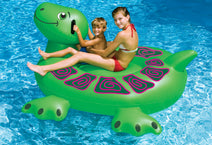 Kids on the Giant Ride-On Sea Turtle