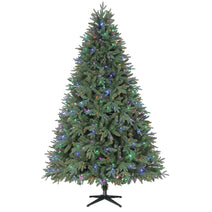 iSparkle Harrison Fir Christmas Trees