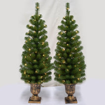 Montclair Spruce Entrance Tree Set of 2