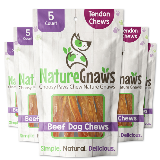 Beef Tendon Chews (5 count) for retail - perspective image of 5 bags