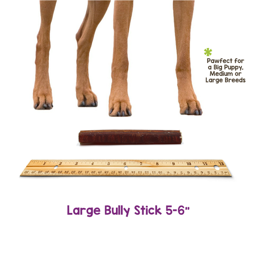 "Large Bully Sticks 6"" (150 Count)"