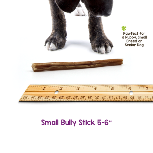 "Small Bully Sticks 6"" (300 Count)"