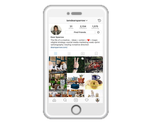 Instagram Pro_Monthly Subscription