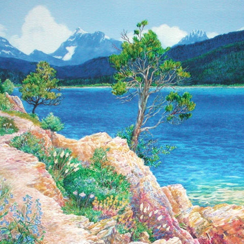 Lake McDonald in Summer - Note card