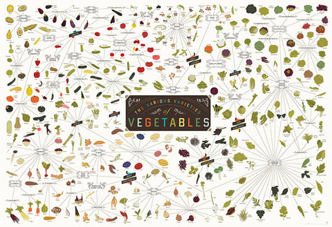 the various varieties of vegetables