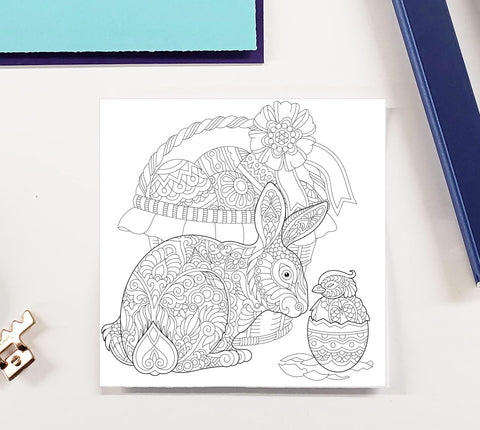 DIY Frame Kit: easter bunny with chick DIY coloring page double mat