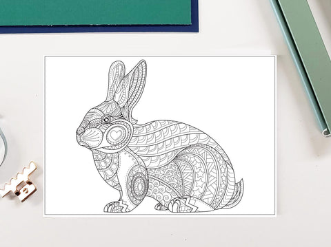 DIY Frame Kit: easter bunny DIY coloring page double mat