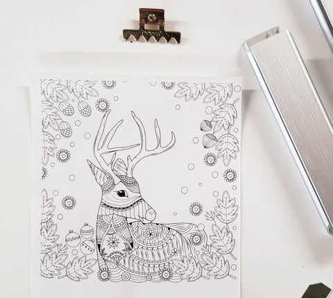 DIY Frame Kit: deer DIY coloring-page