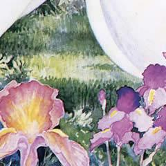 Irises - Note card
