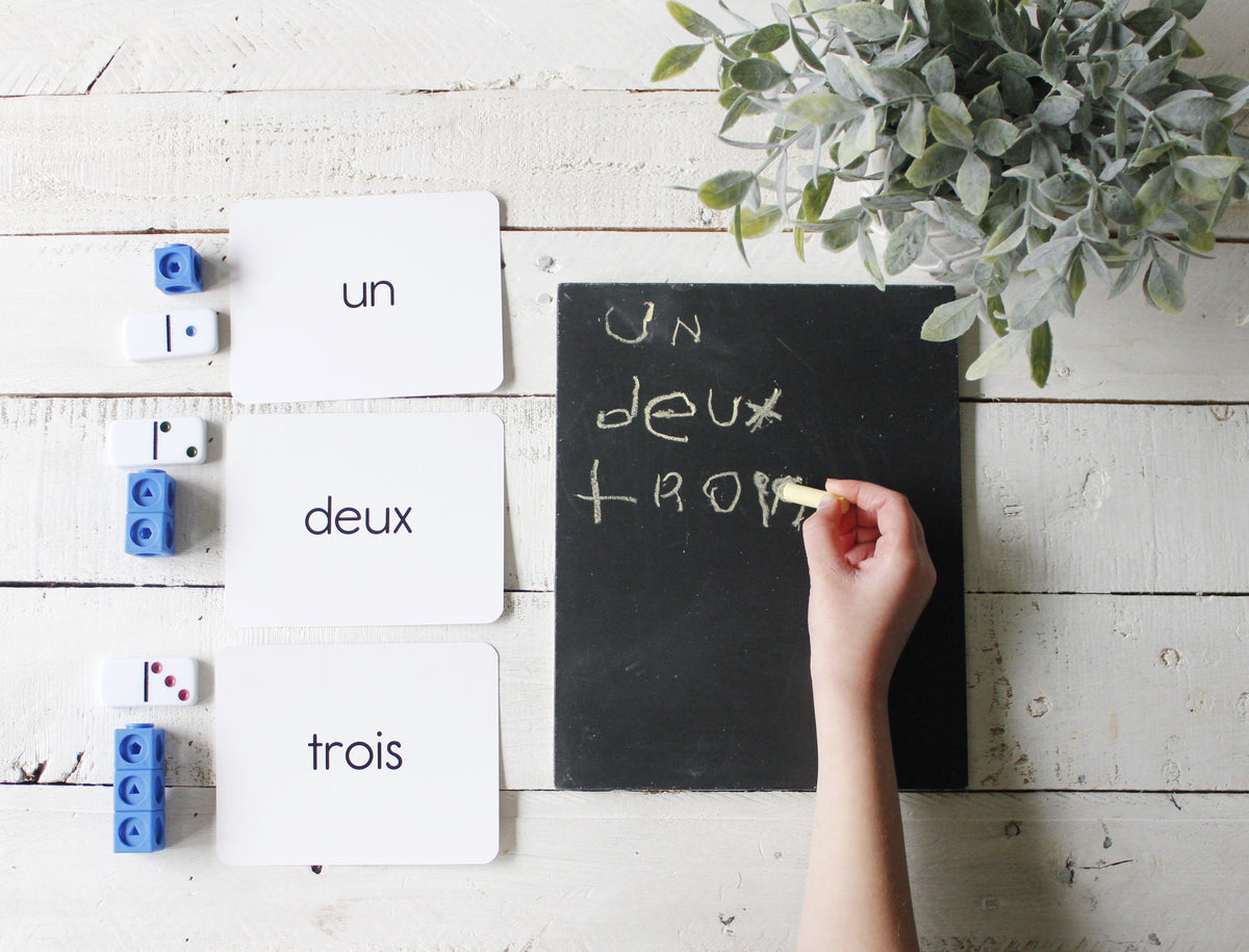 Simple French Flashcard Set