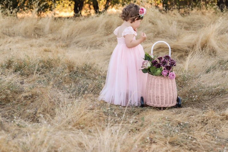 Full Length Baby Pink Tulle Lace Dress