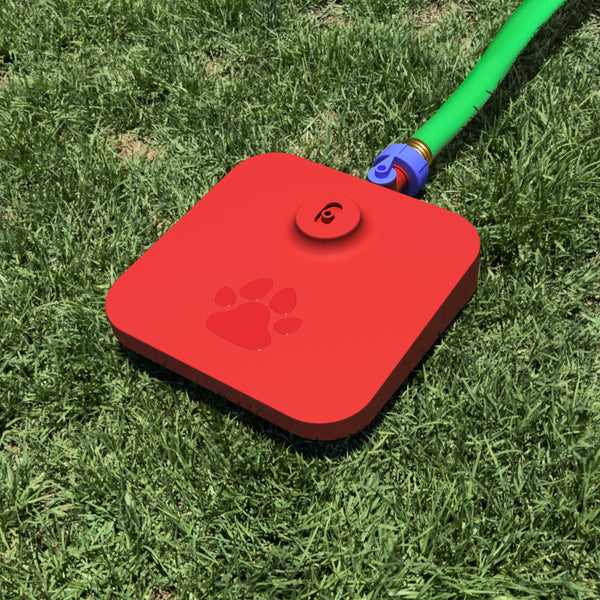 Dog water fountain with hose attached sitting on a lawn