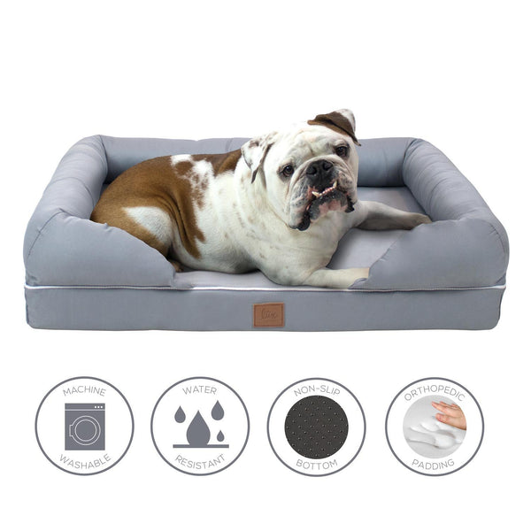 dog lounging in FrontPet Lux Memory Foam Dog Bed