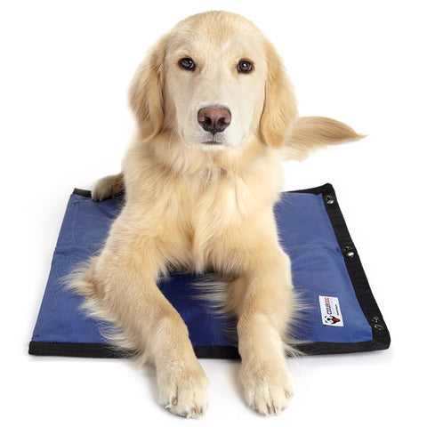 Modular Cooling Pet Mat With Three Layers of Insulation & FlexiFreeze Ice Sheet