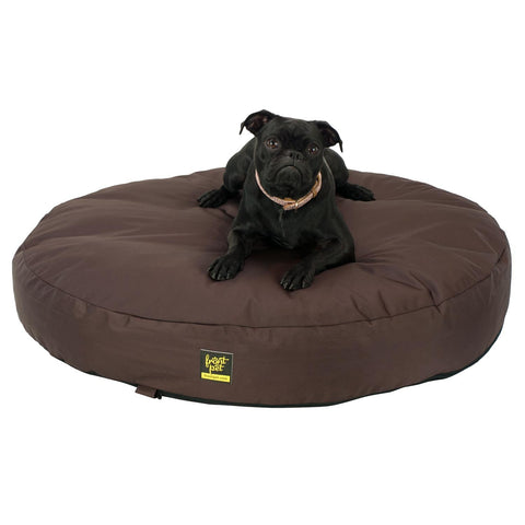 Chew proof dog bed with dog