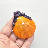 Super Cute Urchin Sea Shells, Natural Orange Sea Shell Pendant