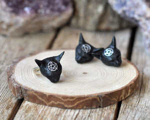 Pentagram Cat Ring, Pentagram Cat Earrings, Sterling silver jewelry Sets, Resin jewelry, 925 Sterling Silver, Gothic Style Jewelry Sets