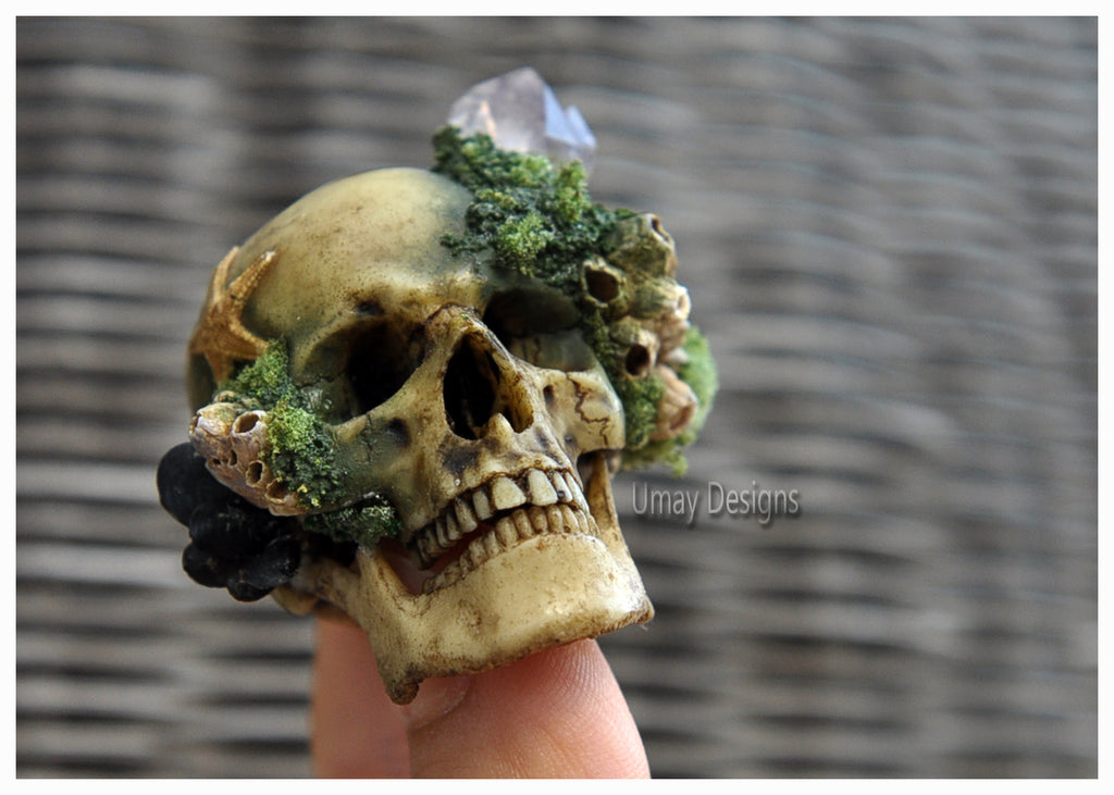 Realistic Human Skull Decorative Art Object, Miniature Skull Art, Sculpture, Decorative Amethyst Crystals, Sea Shells & Sea Urchins