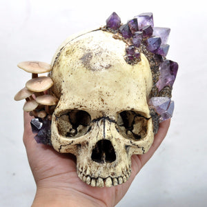 Decorative Skull With Natural Amethyst Crystals and Hand Sculpted Realistic Mushrooms