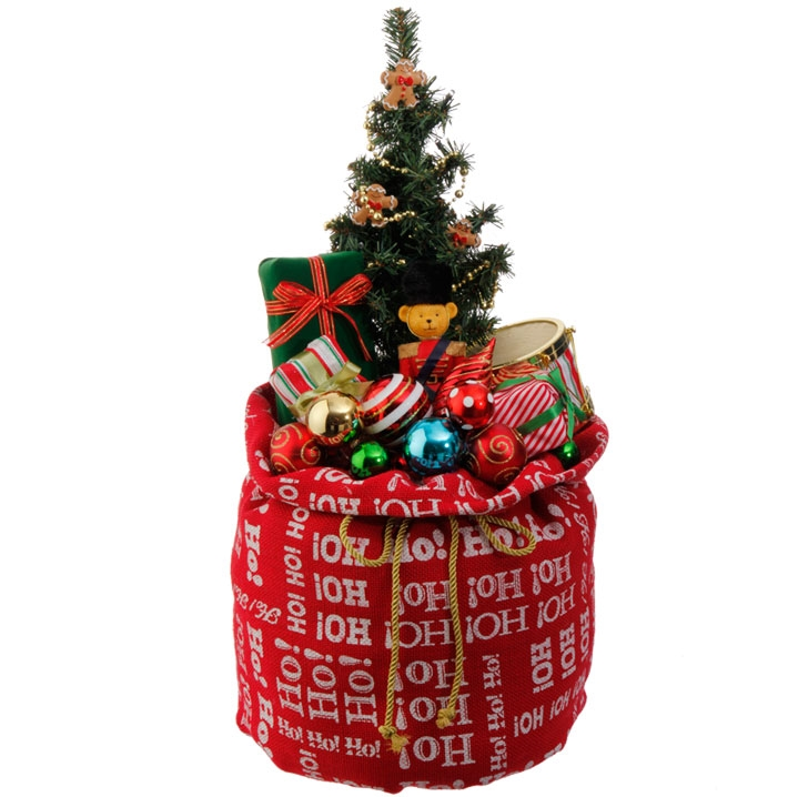 Gift Bag with Lighted Tree Display