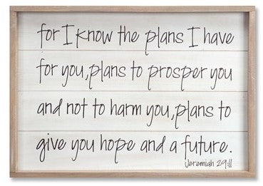 Bible Verse Framed Plaque- Jeremiah 29:11