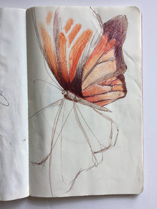 Monarch Mixed Media Drawing