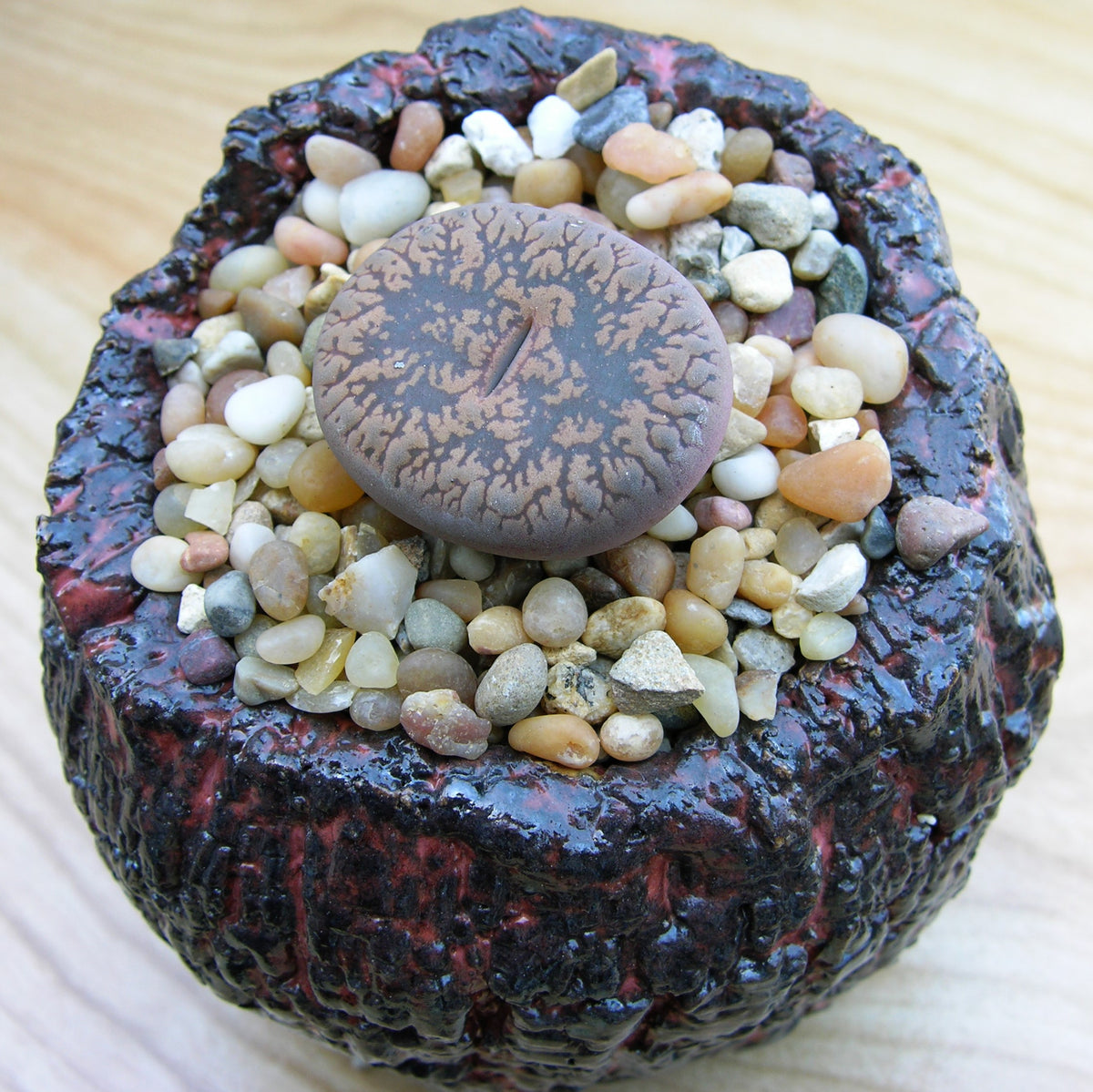 How to keep Lithops alive