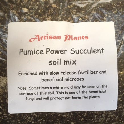 PP Succulent soil mix trail size (1 gallon bag)