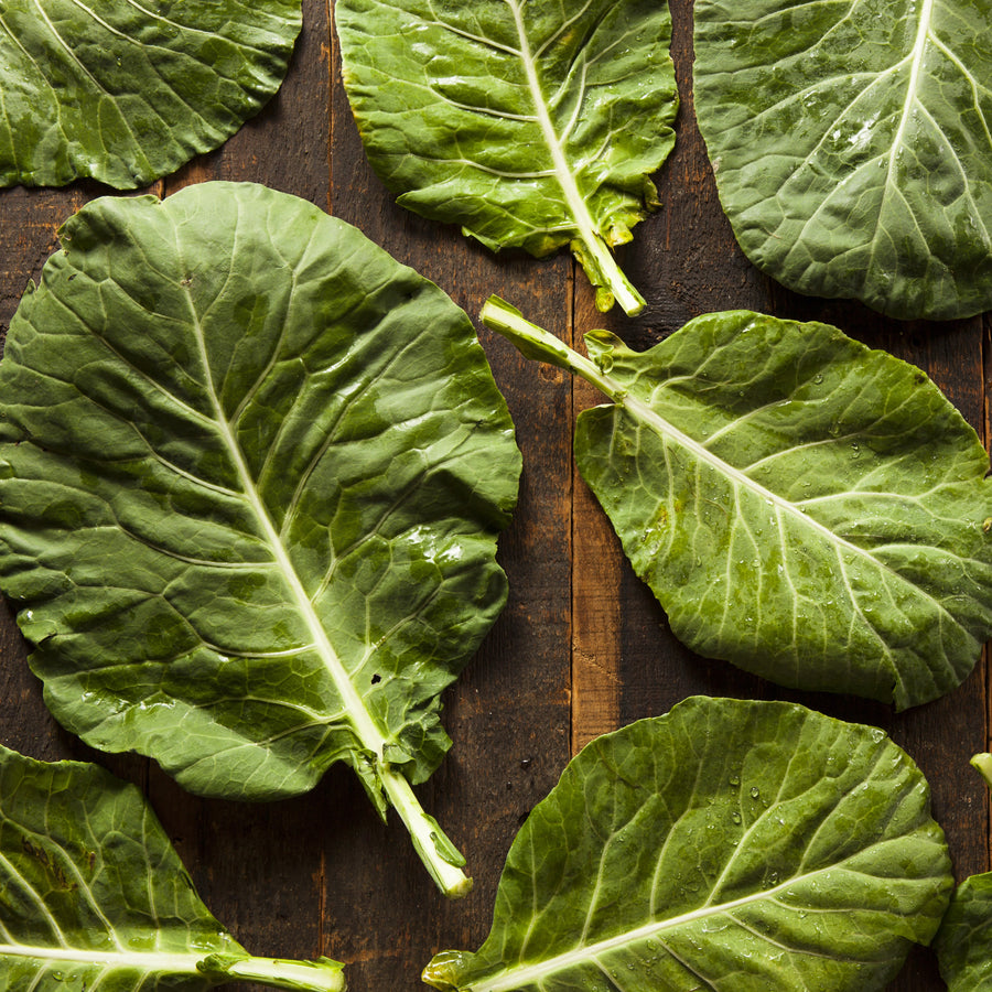 Organic Champion Collard Greens