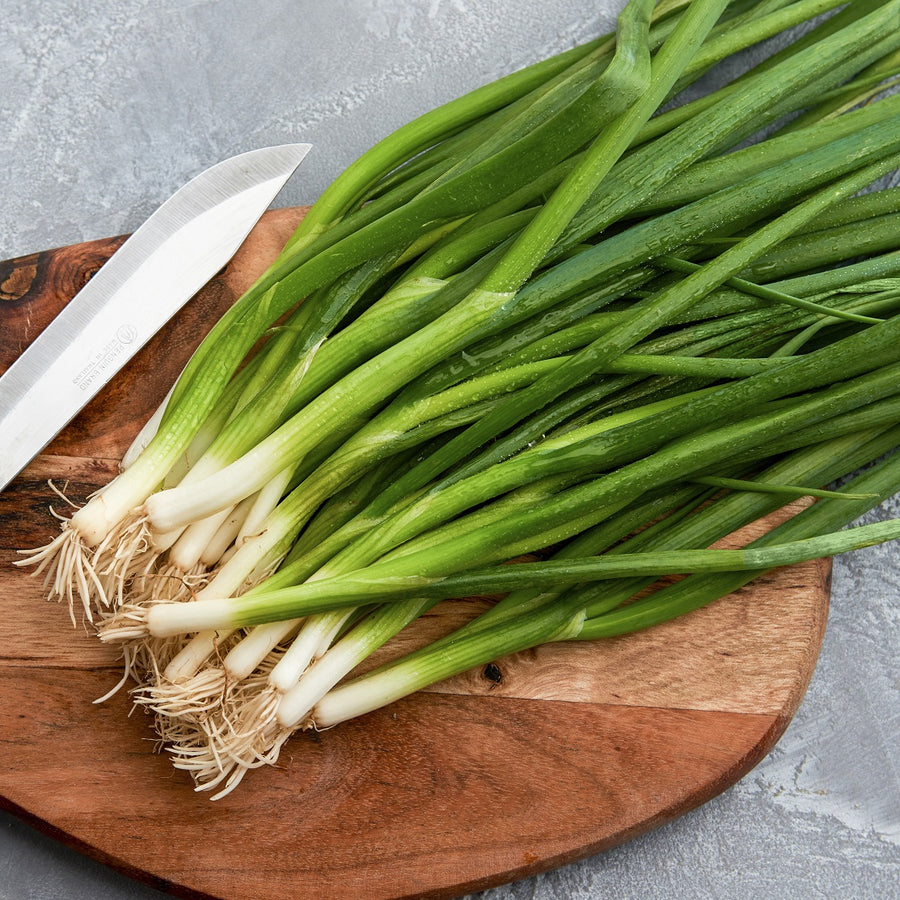Organic Parade Green Onion