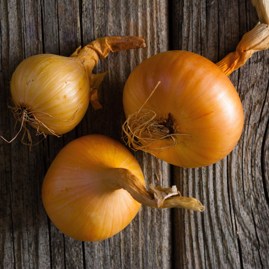 Organic Sweet Spanish Yellow Onion