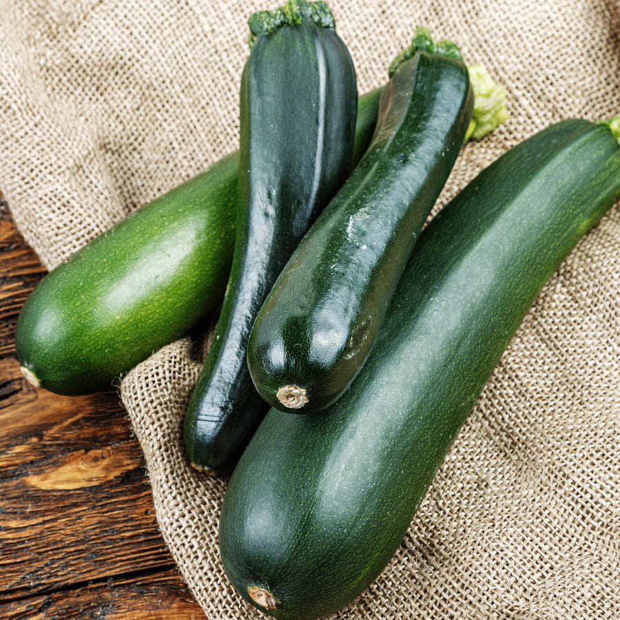 Organic Black Beauty Zuchinni