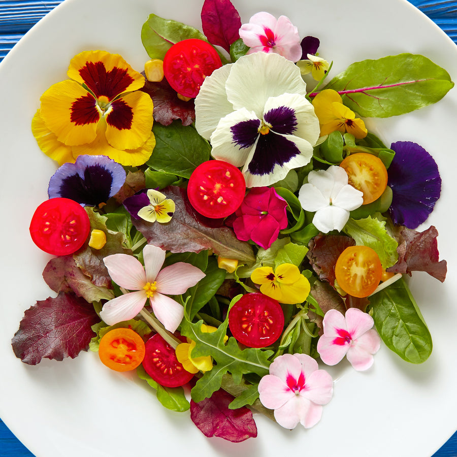 Gourmet Edible Flowers Wildflower Blend
