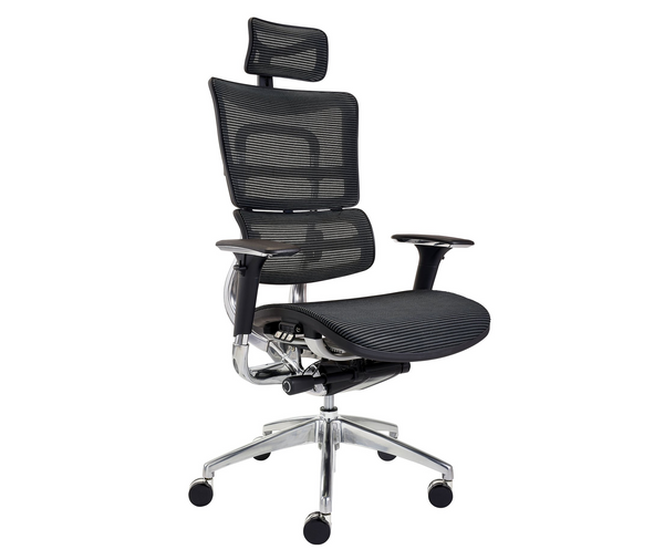 Sculpture ER10 Executive Ergonomic Mesh Chair