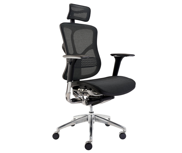 Sculpture MS01 Stylish Ergonomic Mesh Chair