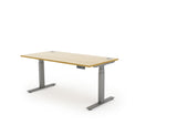 Autonomy Pro Electric Desk