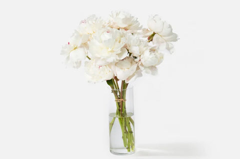 Urban Stems Flowers for Gift Guide