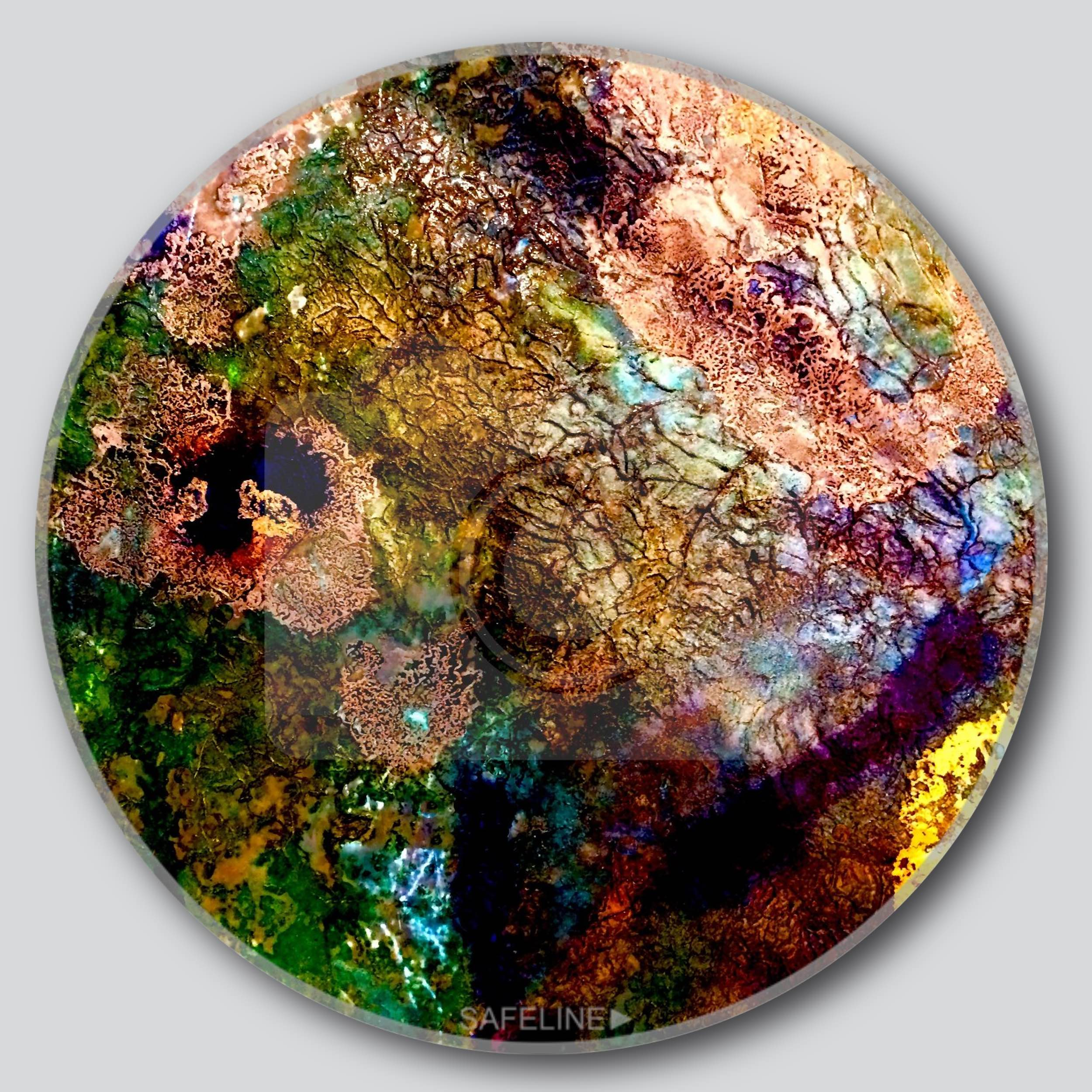 "Last Bloom On Earth 11""/16""/20"" Round Giclee Printed On High Gloss Metal"