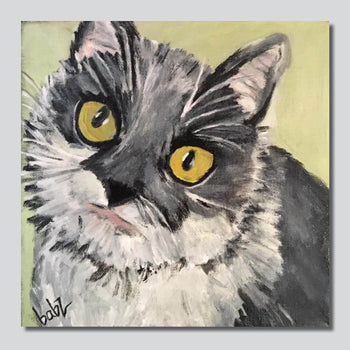 "Purr-fect Kitty 2/ 10"" x 10"" Giclee Printed On High Gloss Metal"