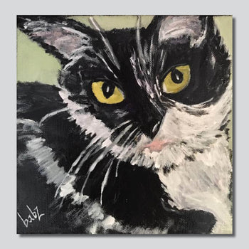 "Purr-fect Kitty 1/10"" x 10"" Giclee Printed On High Gloss Metal"