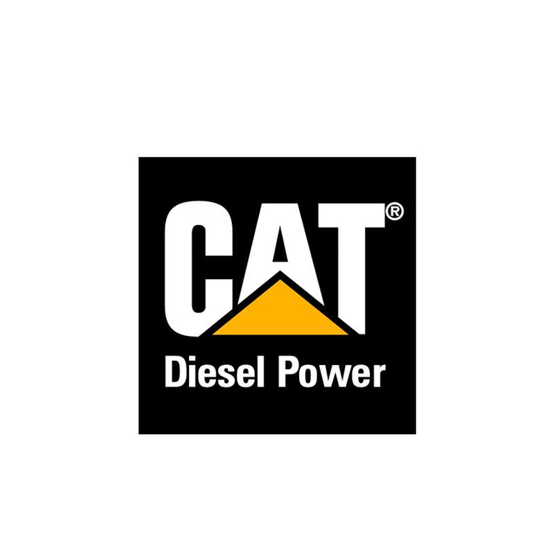 CAT-Dirty Diesel Customs