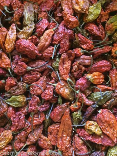 Ghost Pepper Bhut Jolokia Hot Whole Dried Spice - 12 Pods