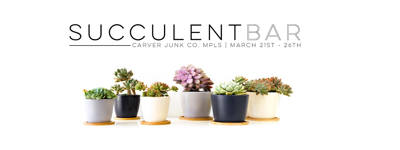 Carver Junk Company | DIY Succulent Planter Bar | Minneapolis, MN | Chaska, MN