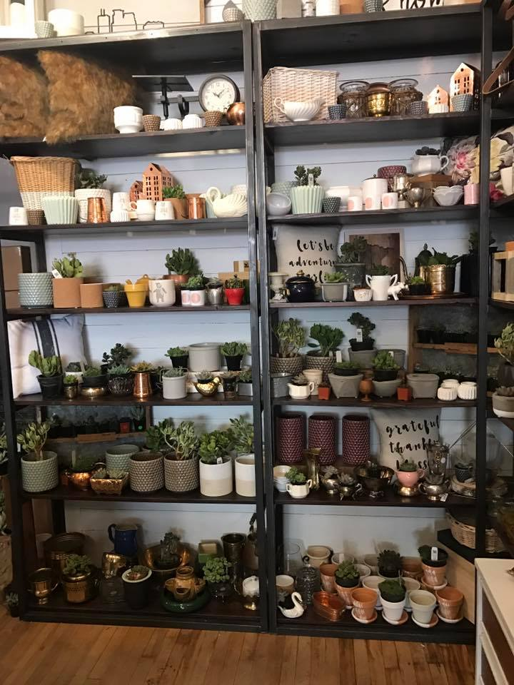 Succulent Bar at Carver Junk Company | Minneapolis, MN | Chaska, MN | DIY Events | Furnishings and Home Decor
