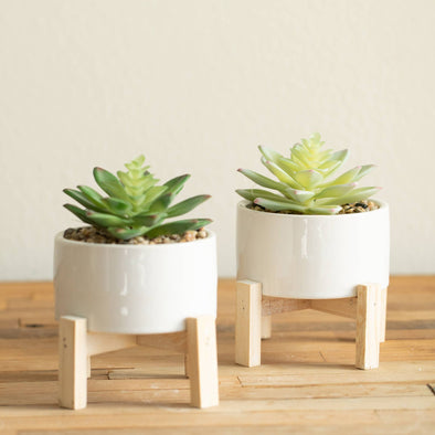 Artificial Succulent in White Ceramic Pot with Stand