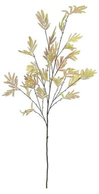 Flocked Mimosa Foliage Branch, 50""